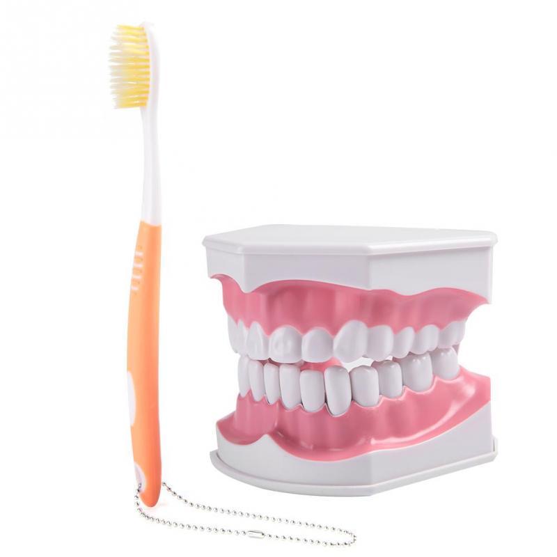 aparate dentare pentru penis)