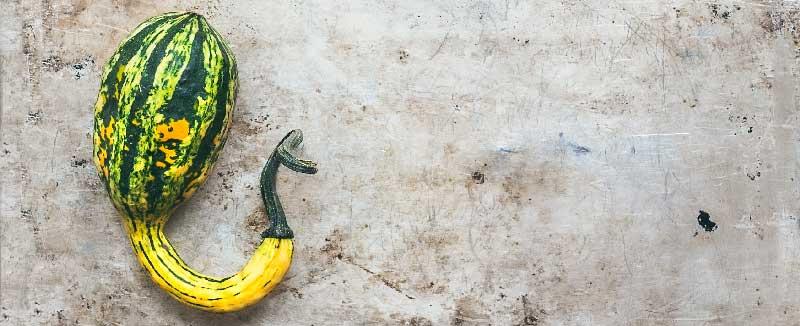 penisuri cu formă nestandardizată