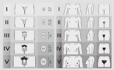 ce dimensiune a penisului este necesară pentru o fată)