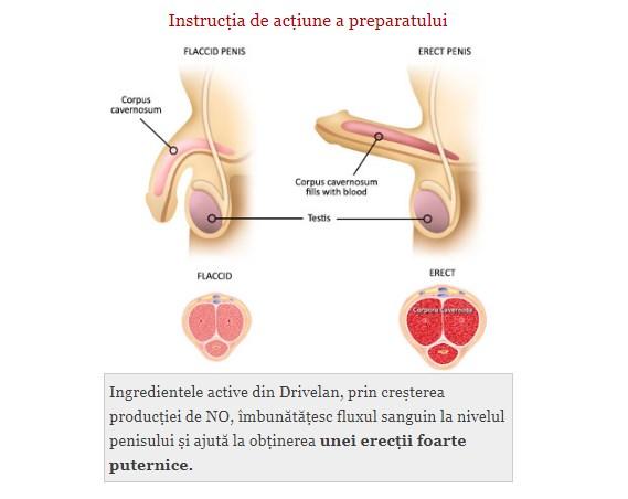 cum să vă păstrați erecția