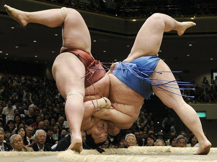 penisuri de sumo
