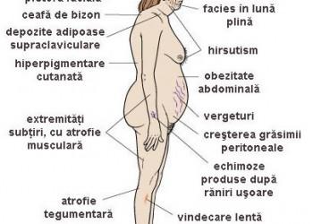 glandele suprarenale si erectia)