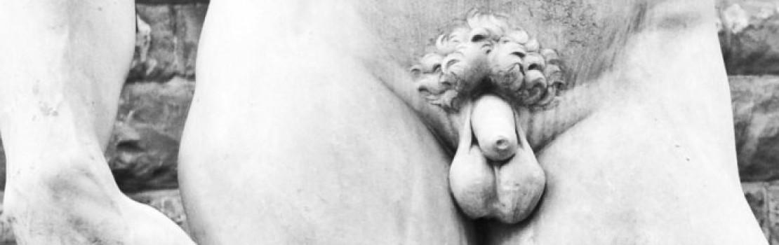 totul despre penisul penisului