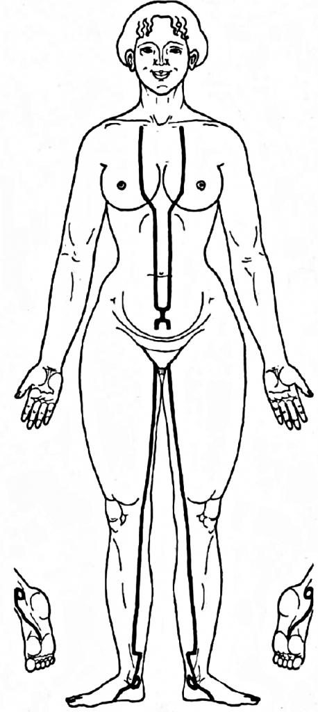 puncte ale corpului pentru erecție)