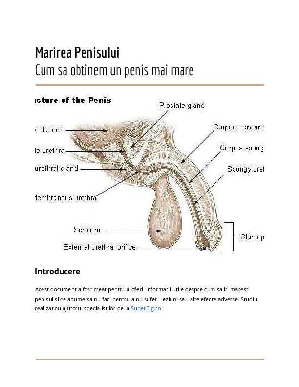 cea mai sigură mărire a penisului