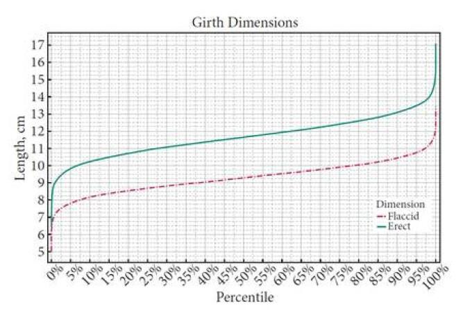 dimensiunea medie a penisului pentru bărbați)