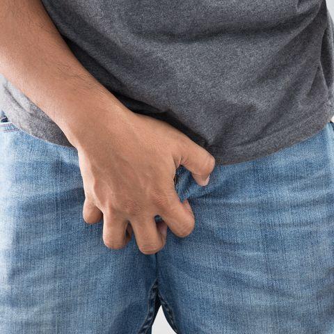 penisul genital)