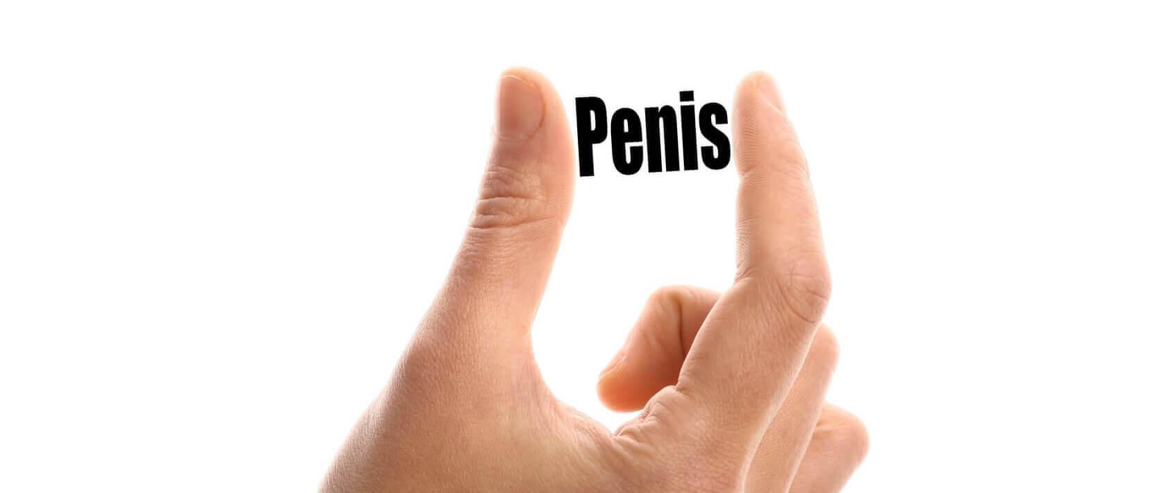 penis în toată splendoarea sa