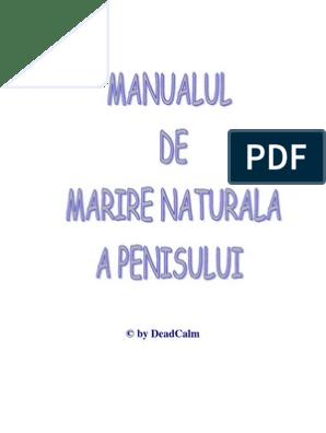 zona sensibila a penisului