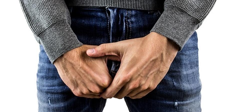 în timpul unei erecții, testiculul intră