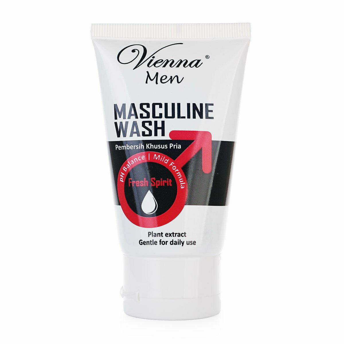 penis masculin penis
